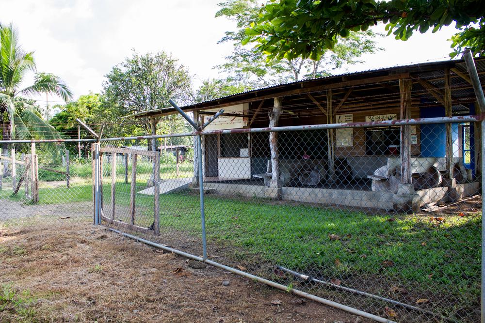 costarica2015-9215.jpg