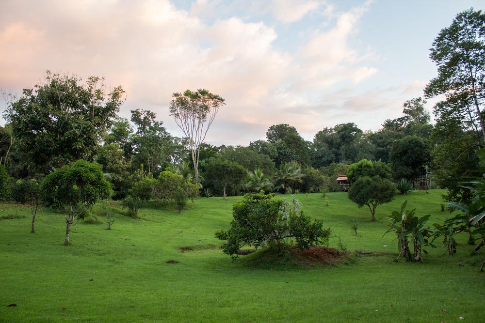 costarica2015-9281.jpg