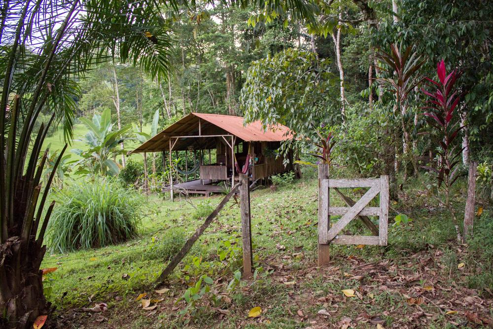 costarica2015-9290.jpg