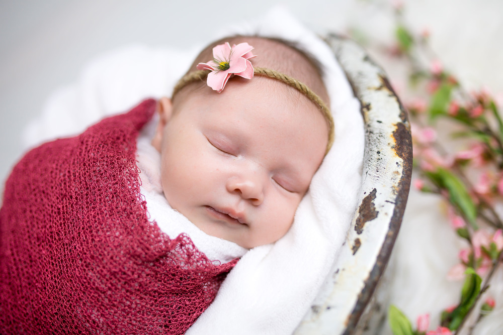Logan Utah Newborn Photographer-0003.jpg