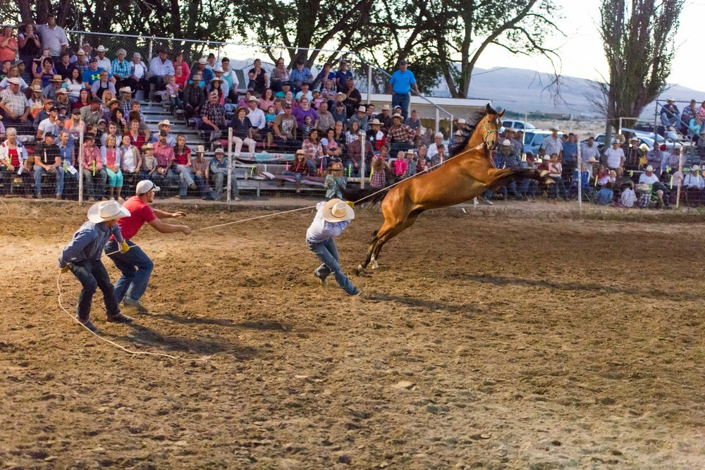 Stone Rodeo Photographer-0595.jpg