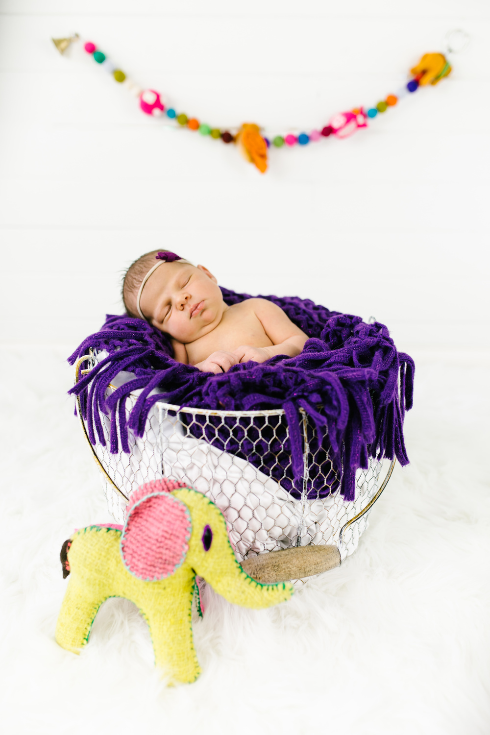 Logan Utah Newborn Photographer-2196.jpg