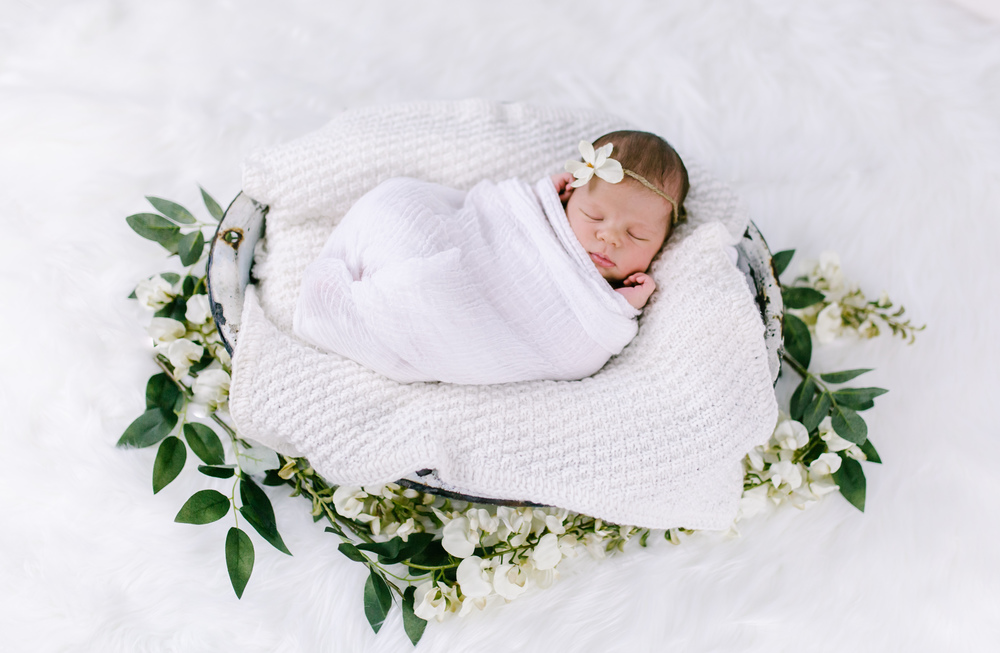 Logan Utah Newborn Photographer-2225.jpg