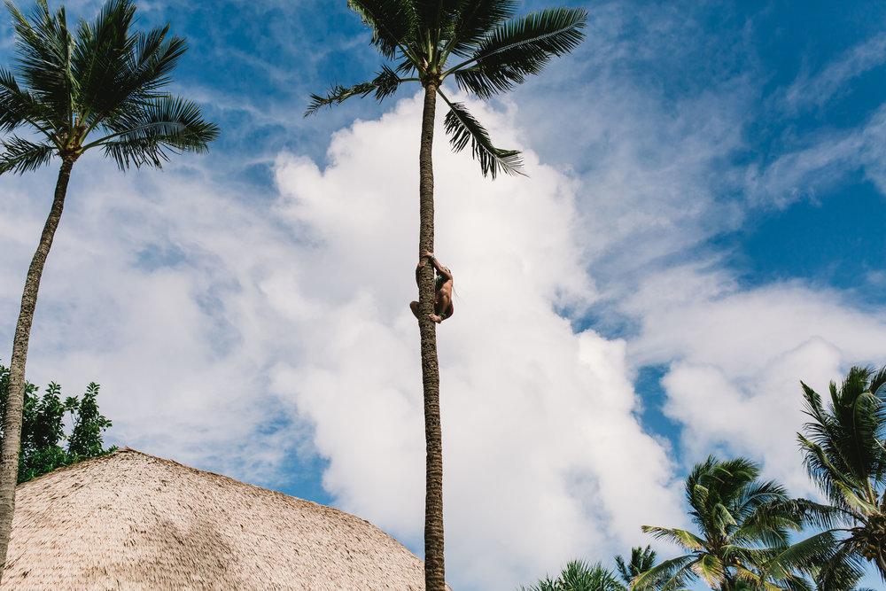 Hawaii-7523.jpg