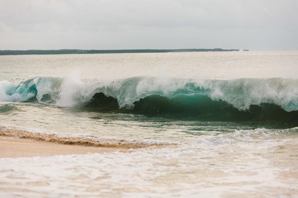 Hawaii-8200.jpg