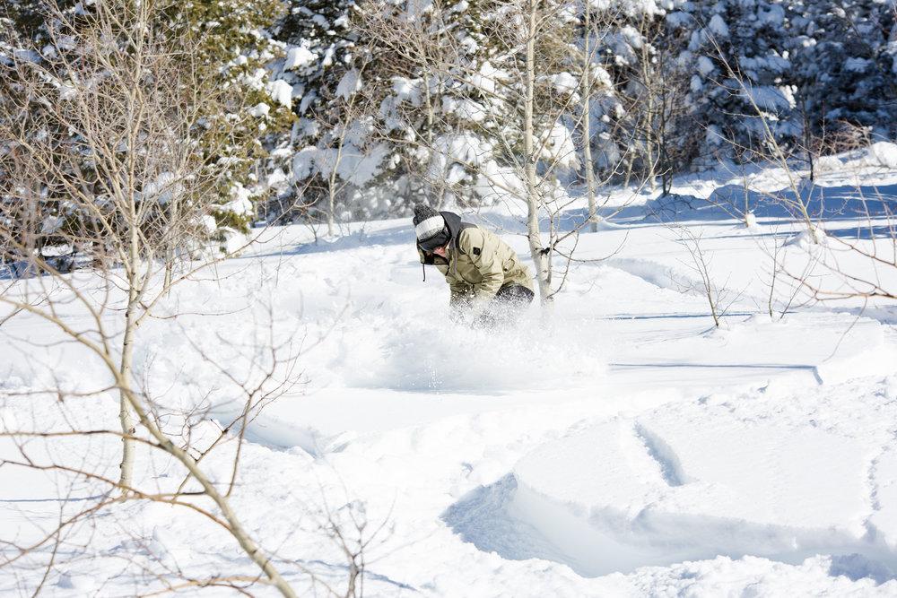 Logan Utah Photographer-1224.jpg