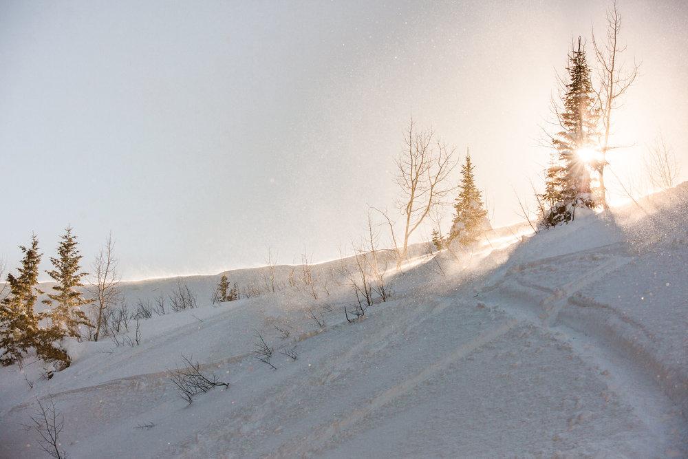 Logan Utah Photographer-1311.jpg