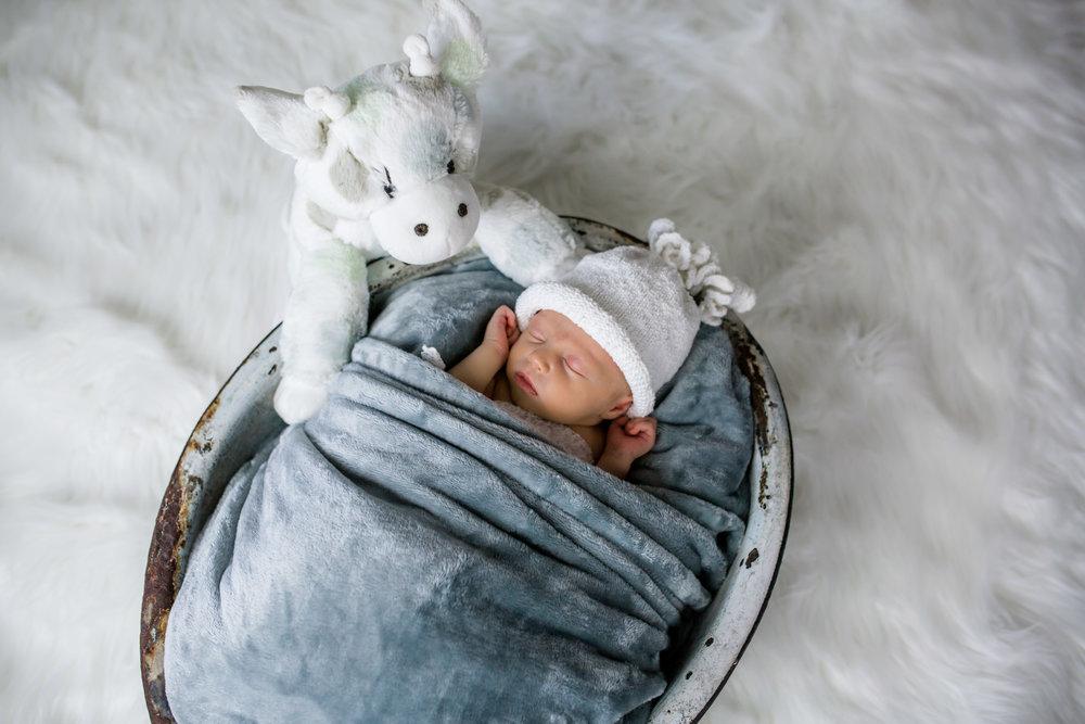 Logan Utah Newborn Photographer-1902.jpg