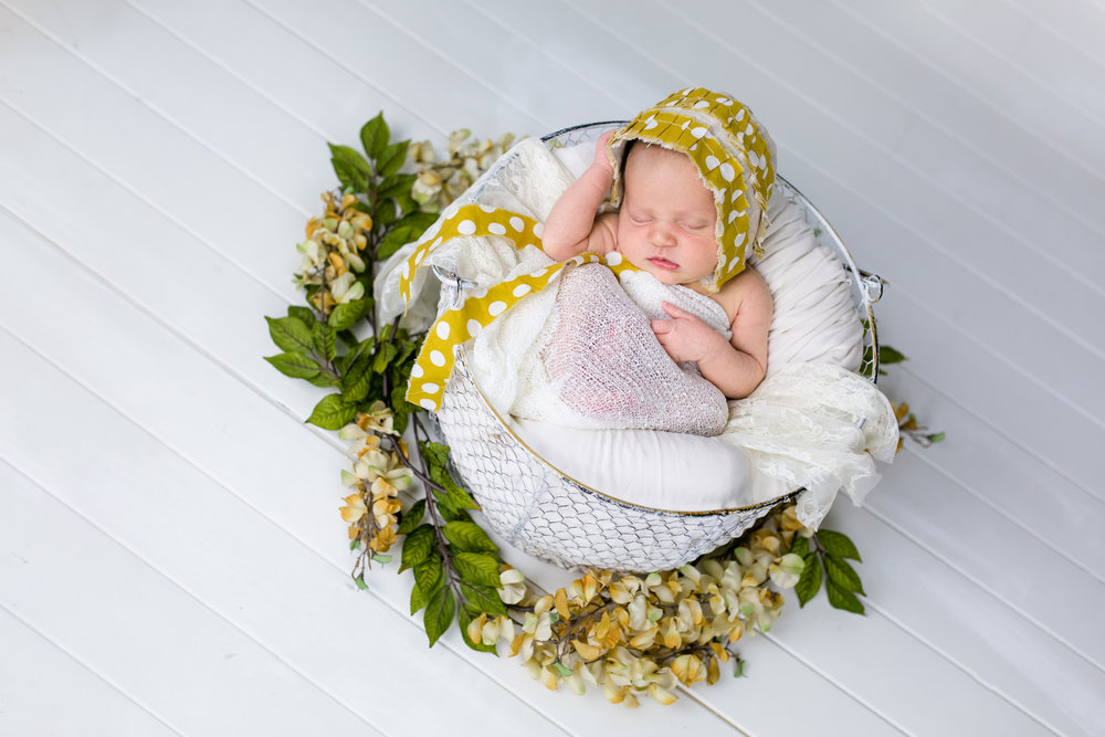 Logan Utah Newborn Photographer-9842.jpg