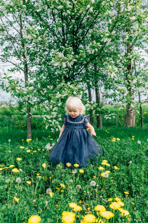 UTah Childrens Photographer-9821.jpg
