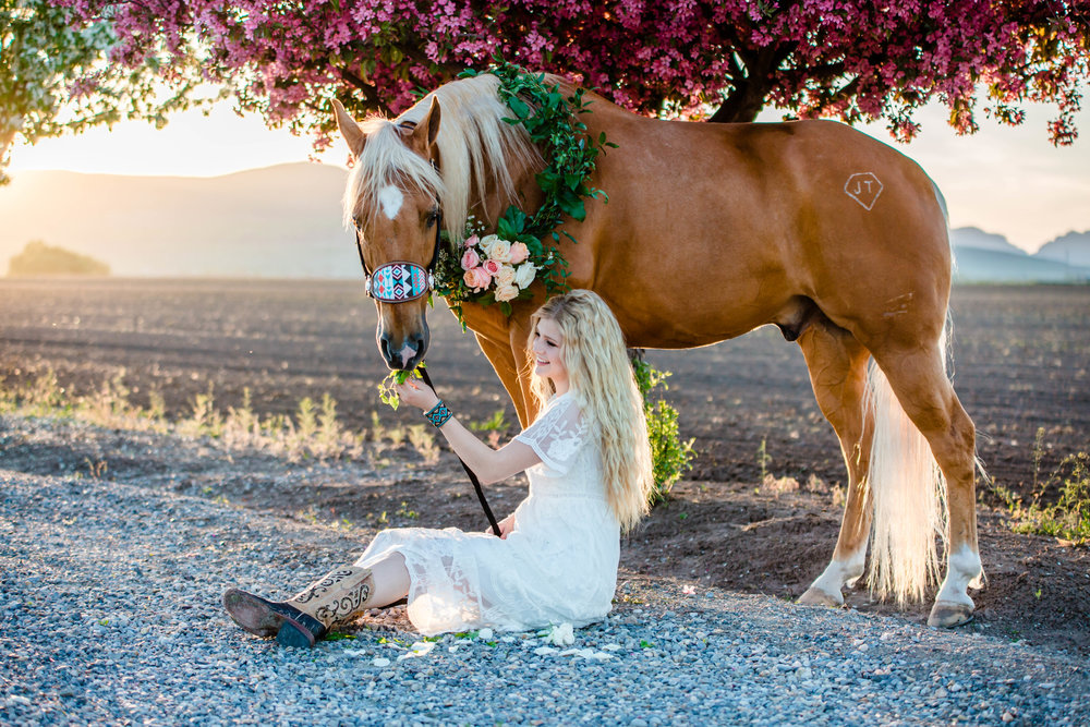 Logan Utah Western Wedding Photographer-0271.jpg