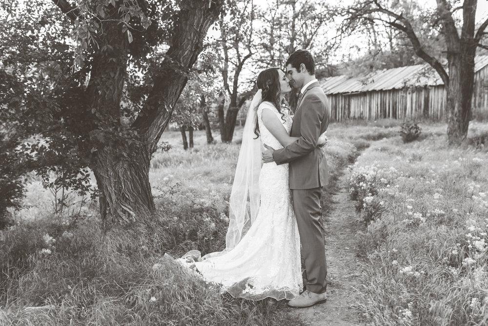 Logan Utah Photographer-0007.jpg