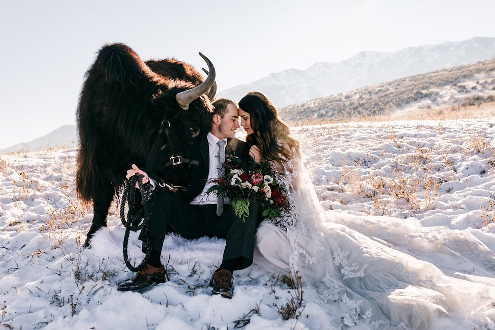 Wedding With Yak