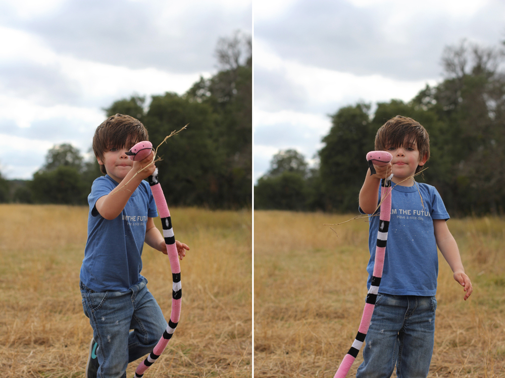 Everett played with this toy snake all day, not letting go of it for a second, and it was the perfect companion out in the tall grass, hissing at everyone who came near.