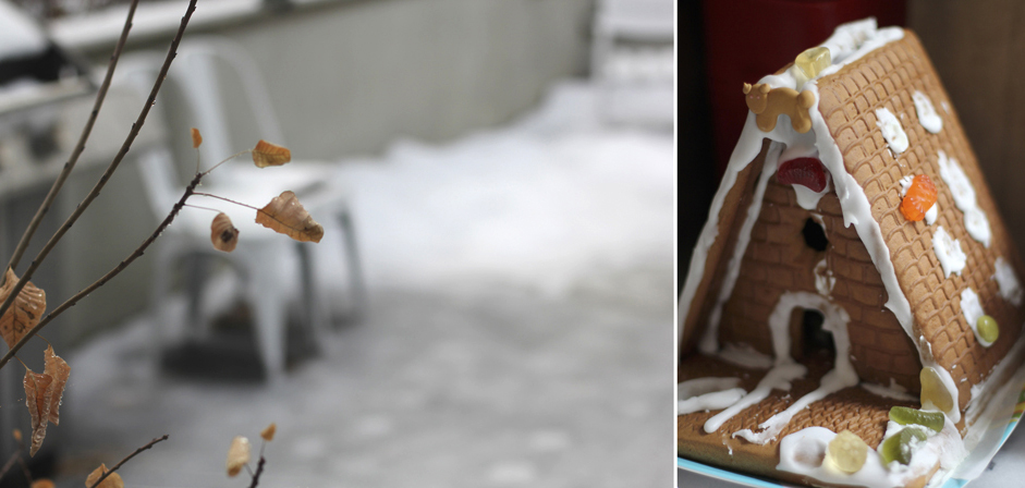 The backyard was completely iced over for a week, giving Everett inspiration for his gingerbread house.