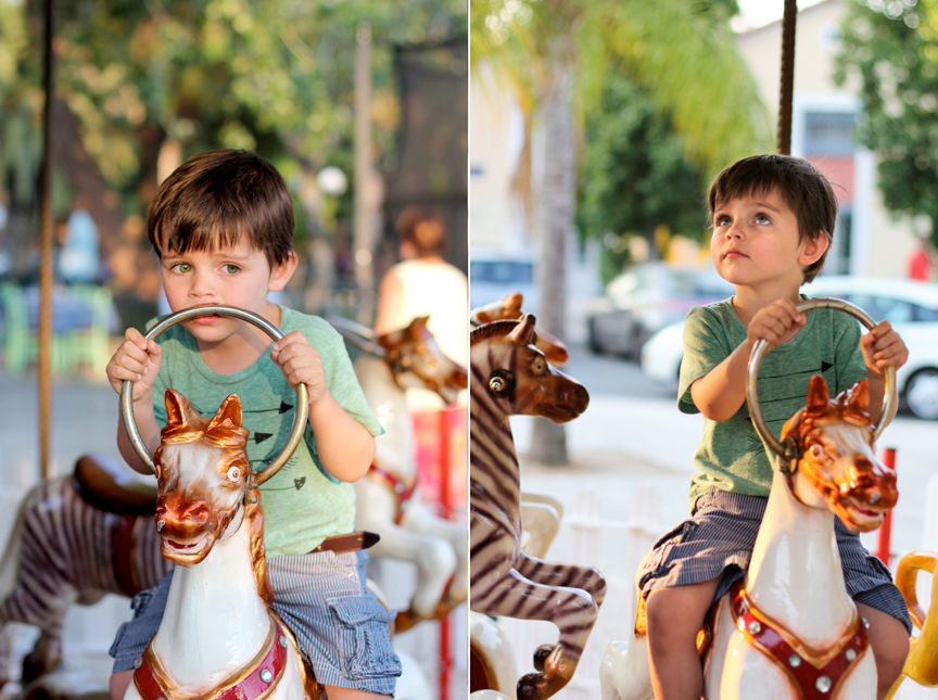 Everett rode the carousel every day. And the rest of the evening he would tell everyone about the zebras.