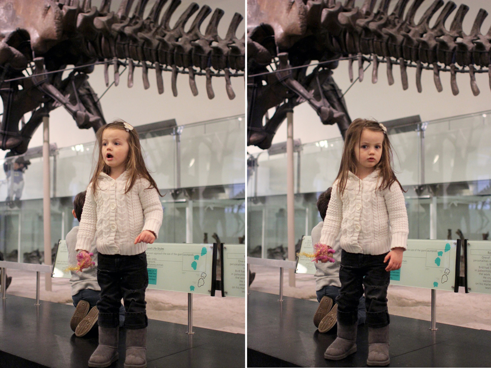 """Alice do you like the dinosaurs?"" "" Dinosaur skeletons ."" Ummm, how on earth did she get so smart? We spent a lot of time running around, jumping up on benches and roaring like dinosaurs."