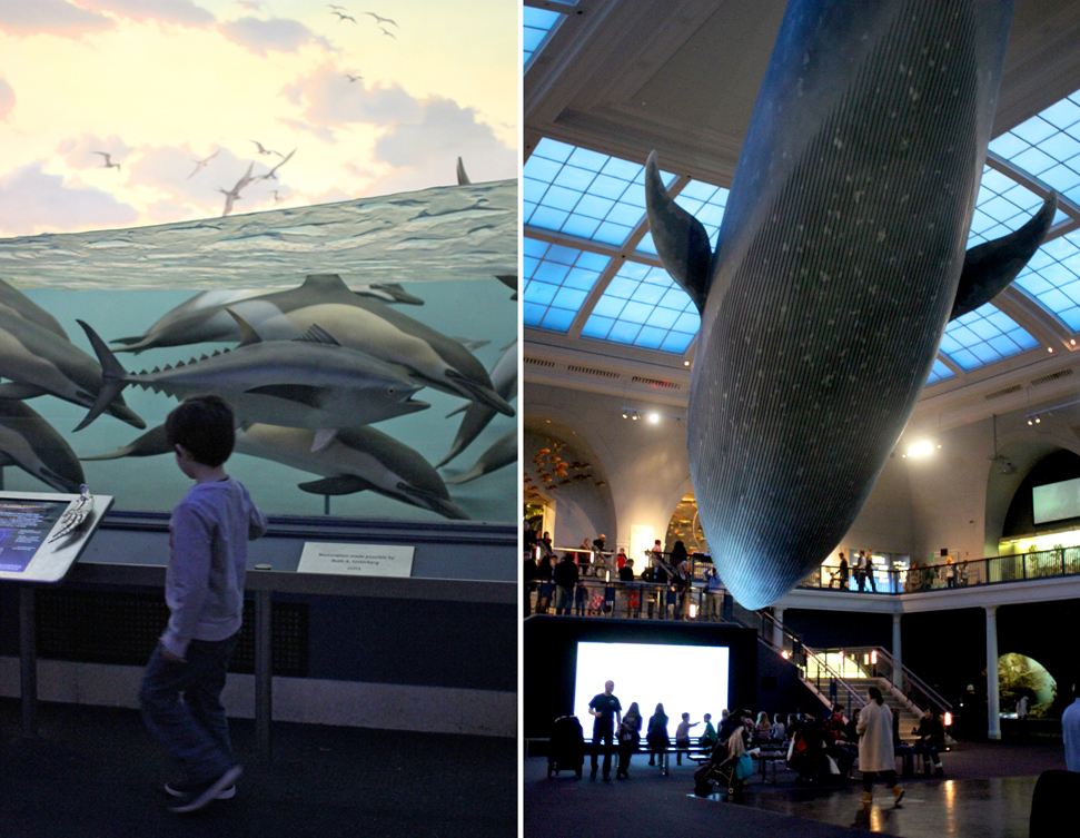 "The "" big, big, giant whale"" ! It's amazing. I cannot wait until they're old enough to do a sleepover here."