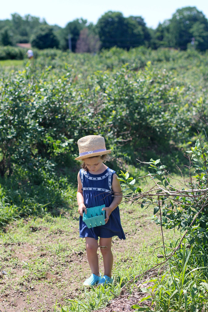 The way Alice walked was so funny – tiny little micro steps, one after another – partly because she didn't like the mud and partly just to be careful not to spill her blueberries.