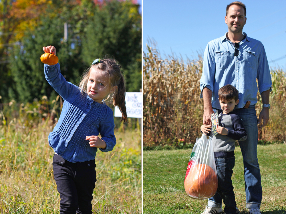 And you can't leave a farm in October without grabbing a couple pumpkins too, right? Alice found a tiny one (Alice-sized), and Everett got the biggest one he could spot (Daddy-sized). Quite a healthy haul for one afternoon at the farm. And we'll be eating apples at every meal for the next month.