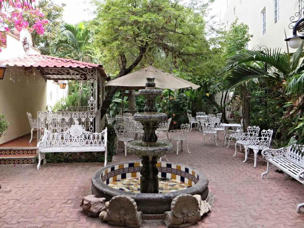 Flor-de-Michoacan-Mexico