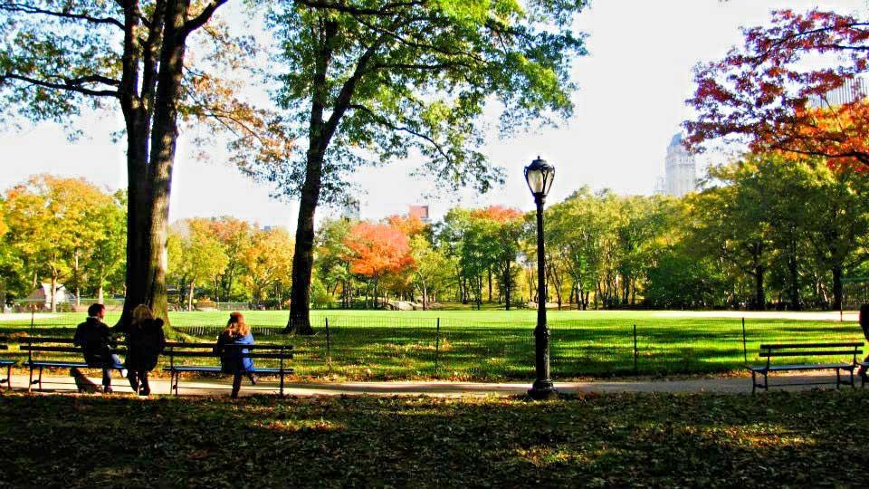Central-Park-Fall.jpg