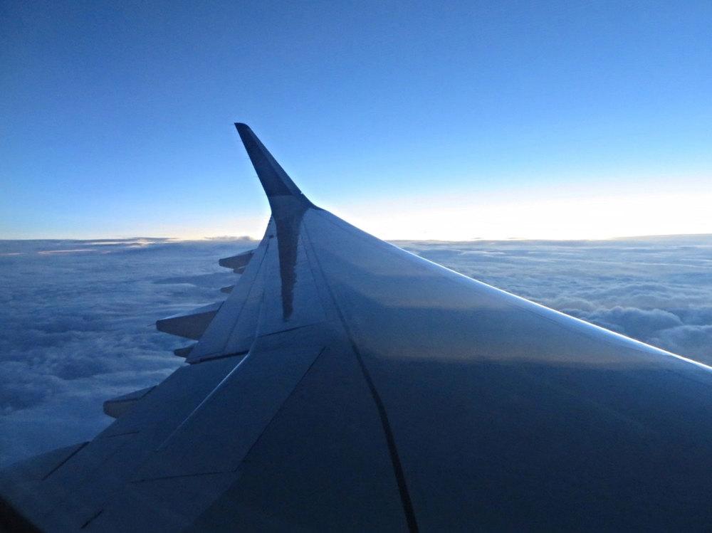 Plane-Views