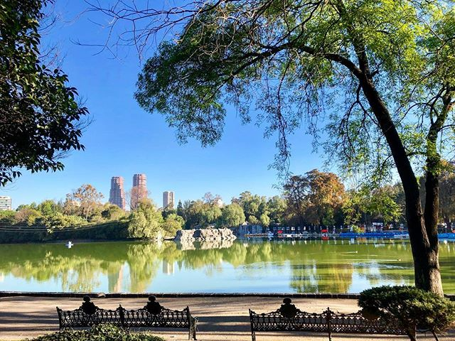 Park life in #CDMX 😍 I think if I lived in Mexico City, I'd have to come here every day 👌🏾