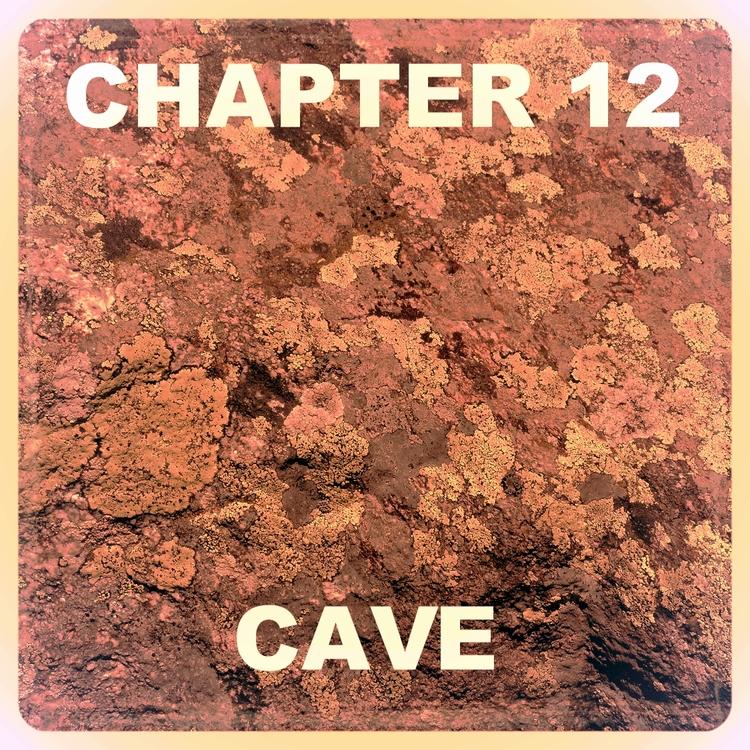Chapter 12.jpg