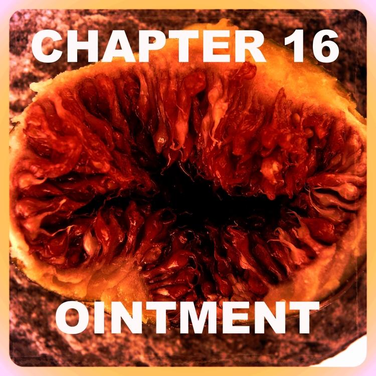 Chapter 16.jpg