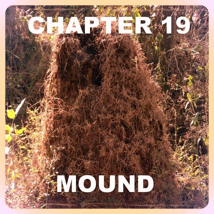 Chapter 19.jpg