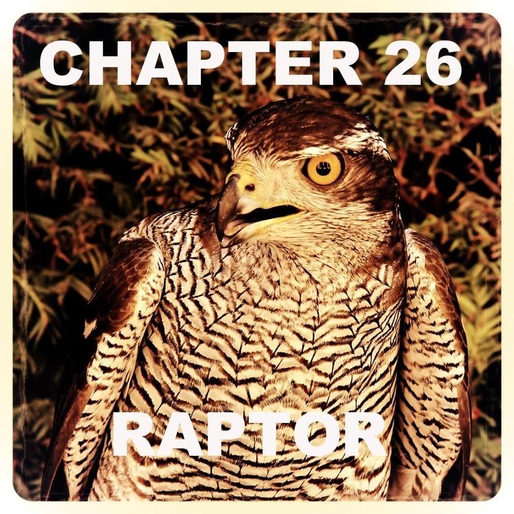 Chapter 26.jpg