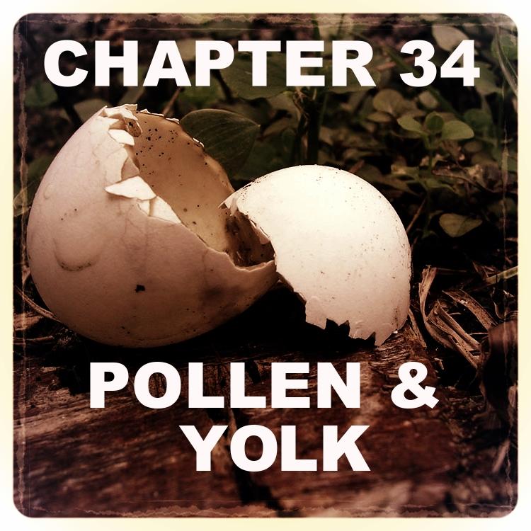 Chapter 34.jpg