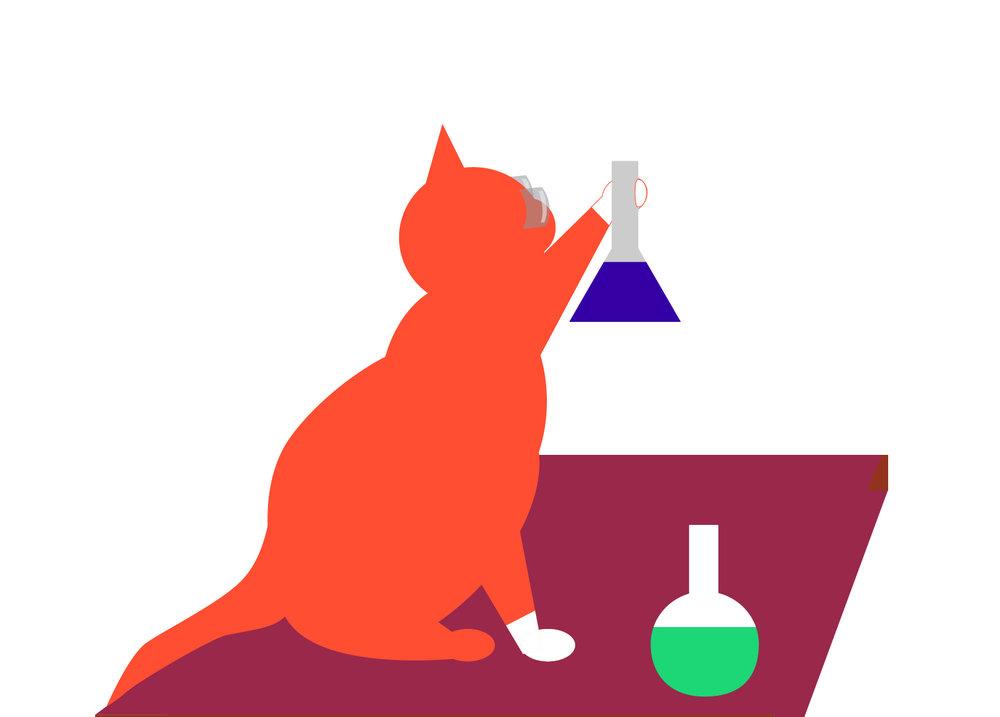 CatBackPack2-09.jpg
