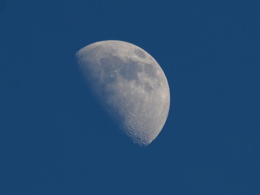 104 moon on a clear Kanha evening.jpg