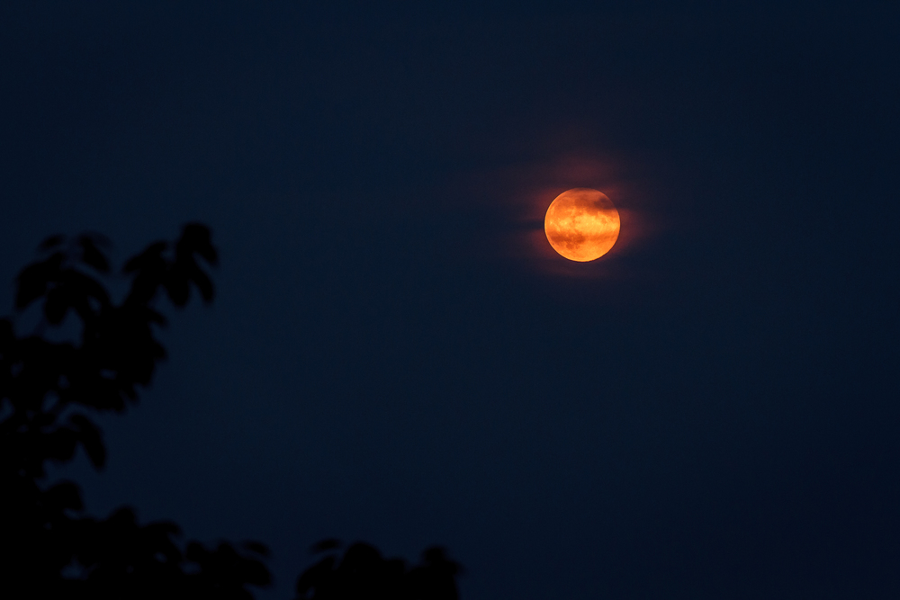 "August 2014 ""Super"" Moon"