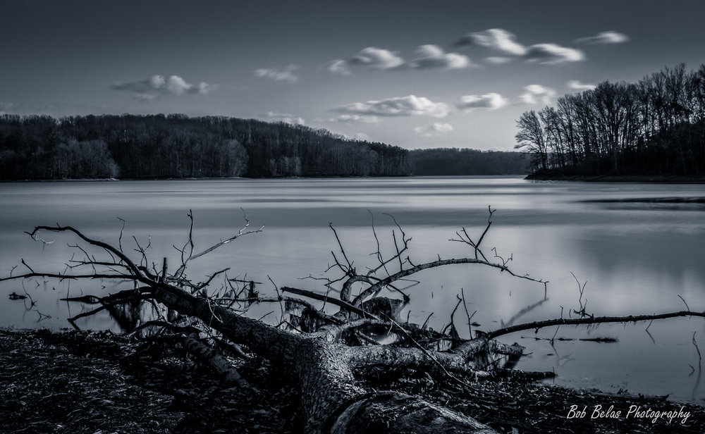 Cold Lake, monochrome