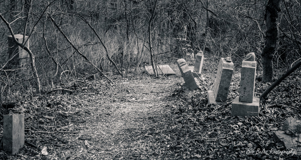 St. Stanislaus Cemetery, monochrome