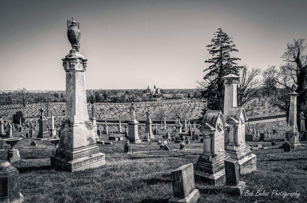 New Cathedral Cemetery Vista