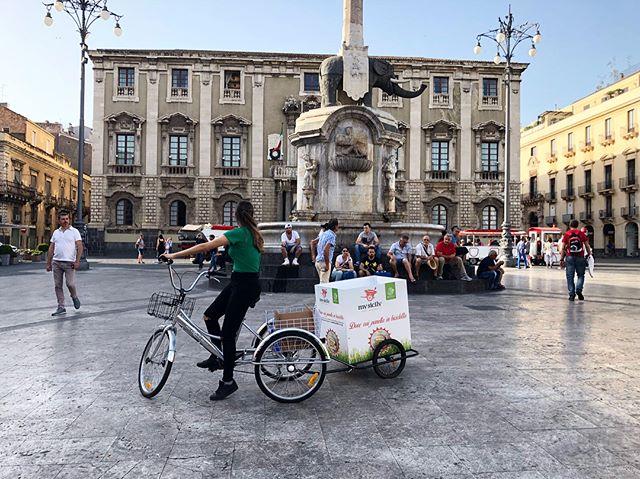 Quanto è bello il nostro #Liotro??🐘 Andate a trovare Alessia e Aurora per scoprire la #promo del mese 🔝 #mysicilyfastgourmet #mysicily #sicilianfood #streetfood #panelle #granisiciliani #degustazione #instacatania #instafood #cataniafood #cataniagram #catania #cataniafoodporn #girovagandopercatania