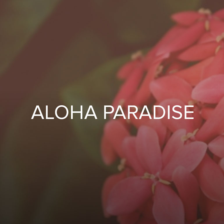 An energetic accord of luscious tropical fruits surrounds a heart of complex floralcy and a gourmand base. Fruity Tropical; Coconut, Mango, Passion Fruit, Patchouli and Rose.