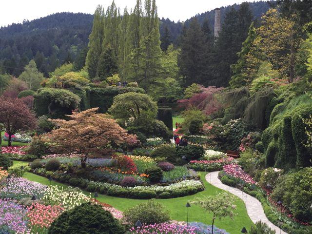 Butchart-Gardens-greenery.jpg