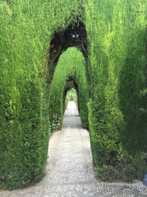 A view through multiple hedges in the gardens of the Generaliffe, at the Alhambra in Granada