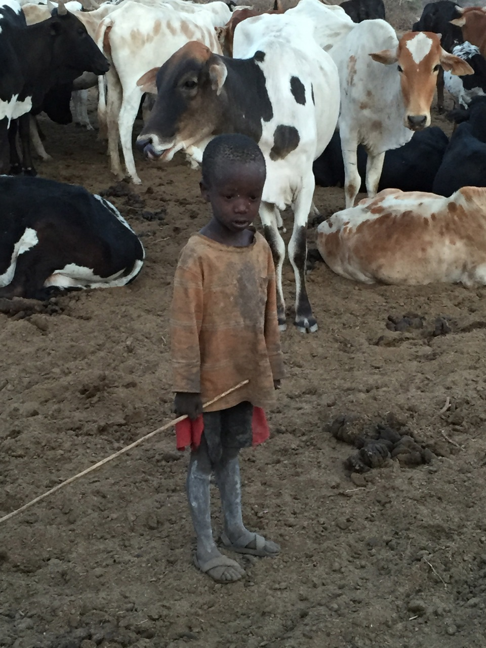 A Masai child standing amongst cattle and cow dung in the middle of his village in the foothills of Mt. Kilimanjaro.