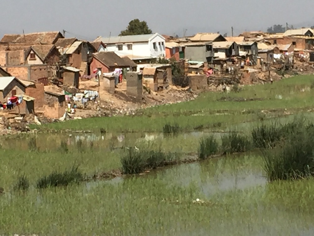 Houses and rice paddies along the road from the airport to Madagascar's capital city, Antananarivo.