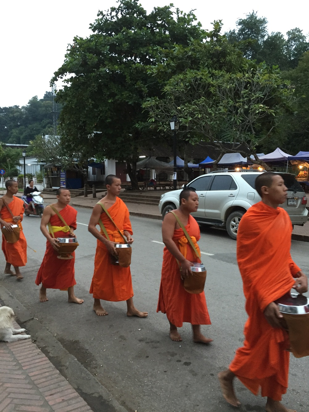 A line of Buddhist monks taking offerings of rice along the streets of Luang Prabang.