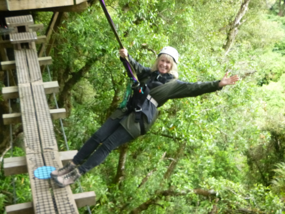 Contributed This zip-wire tour aims to educate visitors on the disappearing birds of New Zealand.