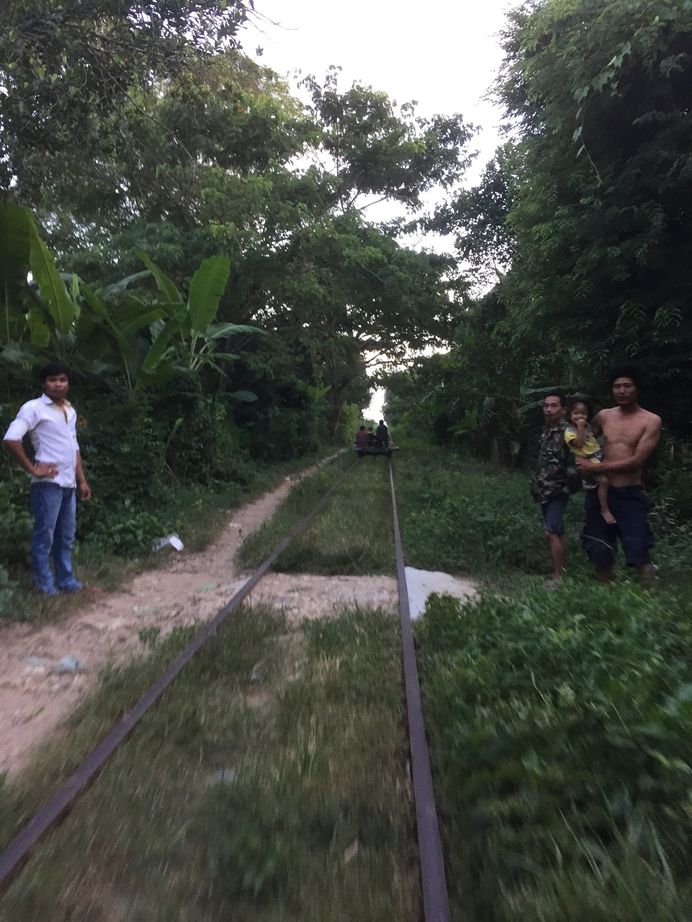We headed down the tracks just before sunset, saying hello to the locals, and noting tree branches full of spiders above.