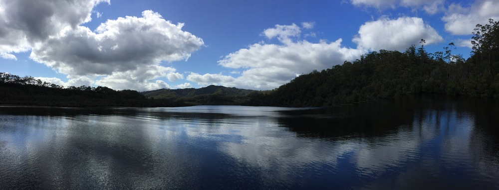The Gordon River, part of the Franklin-Gordon Wilderness National Park and a World Heritage Sight, once was carpeted with 3,500 year old Huon pines, which were mostly logged. Today, the forests are recuperating in their protected state.