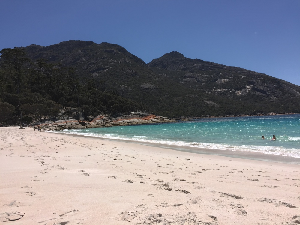 Wineglass Bay at Freycinet National Park on the east coast of Tasmania is a protected spot for many native shorebirds including plovers.